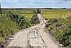 Droga Miedzno - Brzeziny