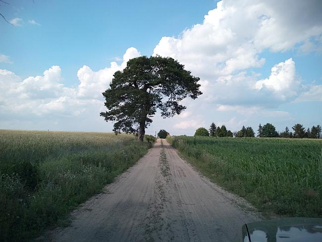 droga Brzeziny - Miedzno